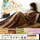 ホットテックス毛布 アクリル毛布 ニューマイヤー毛布高機能あったか素材ホットテックスを使...