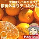 愛媛産 ご家庭用 農家さんもぐもぐ 外なり訳ありデコみかん 10kg(+約0.5kg多め)【送料無料