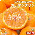 大豊作祝いのカラ・マンダリン10kg【送料無料】訳あり