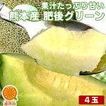熊本産あま〜い肥後グリーンメロン4個入【送料無料】