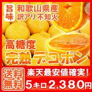 デコポン しらぬい オレンジ