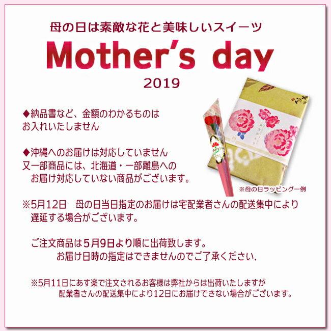 母の日ギフト ランキング プレゼント スイーツ ギフトセット 誕生日 ありがとう 和菓子 旬の和菓子10入と造花のカーネーション付き【あす楽対応】