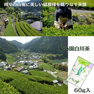 岐阜菊之園白川茶60g入