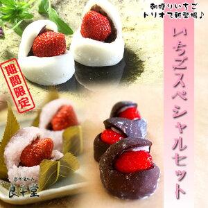 いちご桜餅 いちご大福 いちごショコラ大福12ヶスペシャルセット 送料込