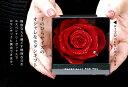 プリザーブドフラワー プリザーブド フラワー 誕生日 結婚祝い 退職祝い プレゼント ギフト お祝い お返し 記念 ボックス ギフト 電報 結婚式 バラ ばら 一輪 1輪 花 女性 おしゃれ 薔薇 ブルー バラ 赤 プロポーズ 母の日 父の日 送料無料 エスペシャリー BOX