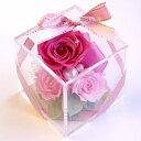 【プティカレ】プリザーブドフラワー 送料無料 ギフト 誕生日 贈り物 プレゼント 結婚祝い フラワーギフトに最適なアレンジメント プリザ プリザーブド