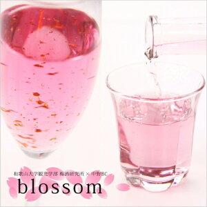 さくら梅酒(blossom)中野BC×和歌山大学共同開発