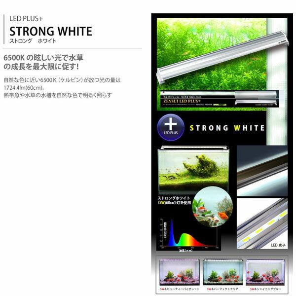 ゼンスイ LED PLUS 45cm ストロングホワイト