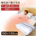 電気毛布 TEKNOS 洗える 敷き毛布 グリーン系 EM-...