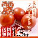 【フルーツトマト】【麗】【送料無料】新鮮・フレッシュ野菜を築地市場からお取り寄せグルメ!...