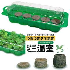 種まき・育苗用品ジフィーハンディーガーデン(種まきミニ温室)