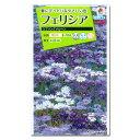 タネ・小袋 9〜2月まき 花タネフェリシア:スプリングメルヘン