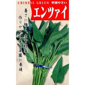 タネ・小袋 エンツァイ・クウシンサイ 3〜9月まきエンサイ(空芯菜)