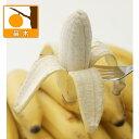 鉢栽培で収穫できるおいしい小型バナナ果樹の苗/ウルトラモンキーバナナ3.5号ポット