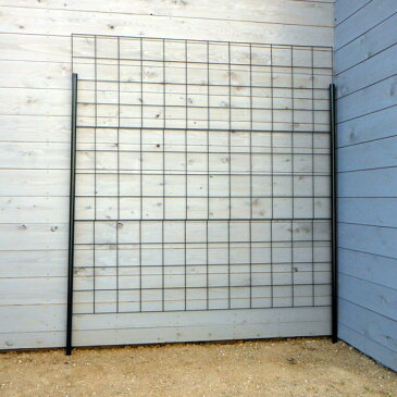 つるバラ用フェンス:カラマリーナVG-G(グリーンパネル)