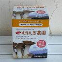 野菜の苗/[21年10月中下旬予約]きのこ栽培セット:もりのエリンギ農園