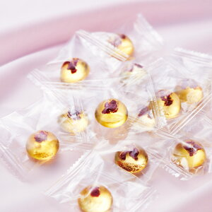 個包装に入ったおいしい梅キャンディ
