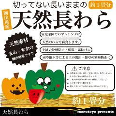 家庭菜園で簡単・便利に使える。切ってない長いままのワラです。岡山県産 天然長わら 1畳分