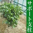 トマト、ナス、ピーマンの栽培に!サポート支柱 Φ8×900mm