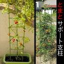 トマト、キュウリ、ピーマンの栽培に。トマトサポート支柱 Φ11×1800mm