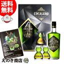 【送料無料】コカレロ+ボムグラス2個付き ギフトボックスセット 700ml リキュール COCALERO 29度 正規品 化粧箱入
