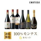 ワイン ワインセット 100%モンテス6本セット MM10-1 [750ml x 6] 送料無料