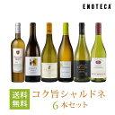 ワイン ワインセット コク旨シャルドネ6本セット WW11-1 [750ml x 6] 送料無料