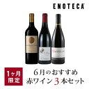 ワイン ワインセット 6月のおすすめ赤ワイン3本セット KK6-1 [750ml x 3]