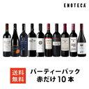 ワイン ワインセット パーティーパック 赤だけ10本 AQ3-3 [750ml x 10]送料無料