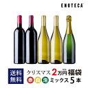 【送料無料】クリスマス福袋2万円(赤白泡ミックス5本)CF11-2 [750ml x 5]