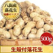 生殻付落花生(ナカテユタカ)500g千葉県八街産落花生