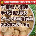 落花生と鶏肉の辛味炒め(相葉マナブで紹介)のレシピ 千葉の落花生