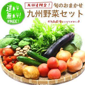九州野菜セット『九州産のおいしい玉子、牛乳が付いたコースもご用意♪』常備野菜セット『グリ...