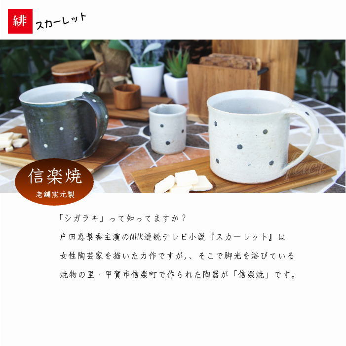 おしゃれ マグカップ ティーカップ コーヒーカップ「ドット黒」信楽焼(しがらきやき) スカーレット 陶器 焼物 丸十製陶 日本製 キッチン 小物 食器 古民家カフェ 茶器