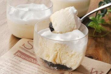 豆乳で作った豆乳 プリン  【個包装】【1000円以下】ホワイトデーギフト ホワイトデー2017 オフィススイーツ】