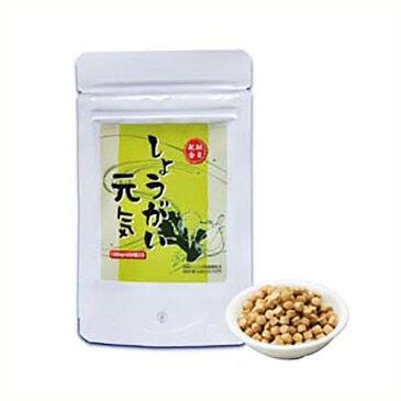金時ショウガ、ニンニク、吉野くず、有機発芽玄米配合のサプリメントしょうがい元気 220粒入