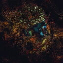 ダミアン・ラザルス&ジ・アンシエント・ムーンズ/メッセージ・フロム・ジ・アザー・サイド 【CD】