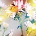 Plastic Tree/シオン 【CD】