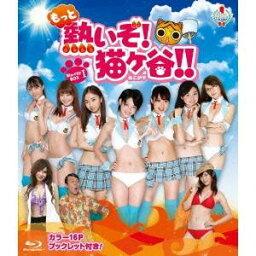 もっと熱いぞ!猫ヶ谷!!Blu-ray-BOXI 【Blu-ray】