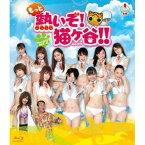 【送料無料】もっと熱いぞ!猫ヶ谷!!Blu-ray-BOXII 【Blu-ray】