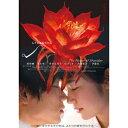 シャニダールの花 特別版 【Blu-ray】