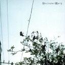 クリープハイプ/待ちくたびれて朝がくる 【CD】