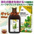 Salus-Haus Gallexier Liquid herbal formula サルス・ハウス ギャレクシア 液体ハーブ飲料 500ml