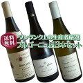 【送料無料】ブルゴーニュ白ワイン3本セット(B)ワンランク上のドメーヌ厳選