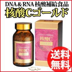 【送料無料】核酸Cゴールド300mg×360粒【核酸サプリメント/DNA/RNA/サケ白子エキス/アップル風味/第7の必須栄養素】