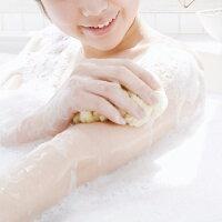 天然海綿スポンジ(ソフトシルク種)