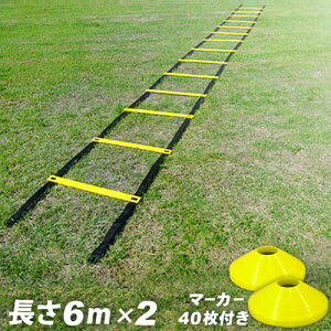 あす楽◆即納◆【レビューでおまけ付き】【レビューでおまけ付き】 トレーニングラダー 6m 2組...
