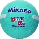ミカサ MIKASA 教育用白線入ドッジボール2号 D2W G