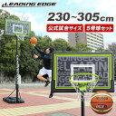 リーディングエッジ バスケットゴール&molten 5号球セット 屋外 家庭用 ST LE-BS305ST/BGR5MY