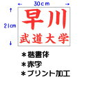 九櫻 クサクラ 公式試合用柔道ゼッケン プリント加工 小学生用 30×21cm 楷書体 赤字 JT63021KAR